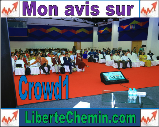 avis crowd1